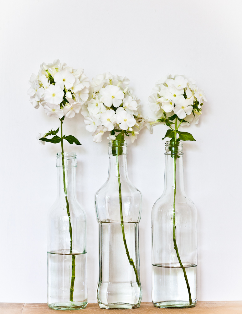 White hydrangeas in vase via tumblr on we heart it mightylinksfo