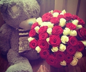 flowers, red, and bear image