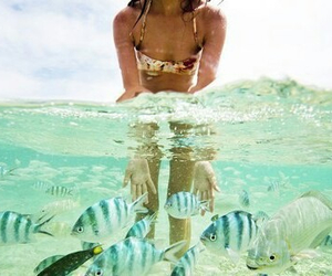 fish, summer, and girl image
