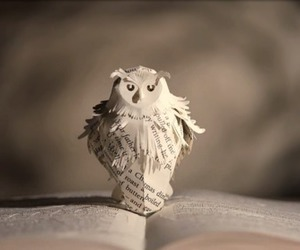 owl, pottermore, and harry potter image