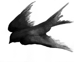 bird, drawing, and black image