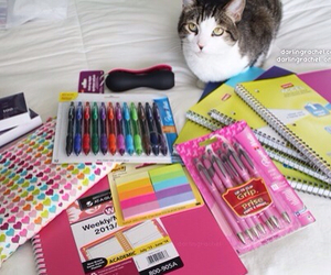 school, pens, and supplies image
