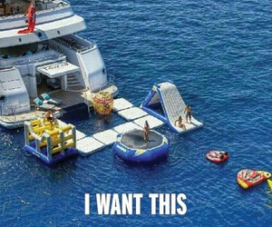 funny, swim, and iwantthis image