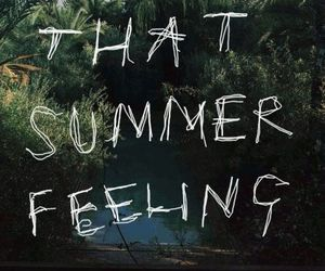 summer, feeling, and quotes image