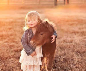 animals, farm, and cute baby image