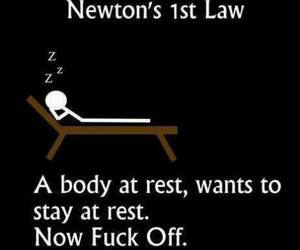 funny, newton, and science image