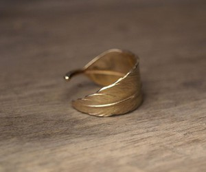 ring, gold, and feather image