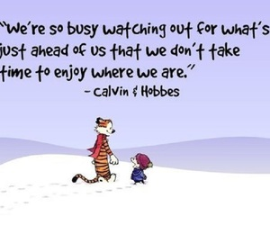 quote, life, and calvin and hobbes image