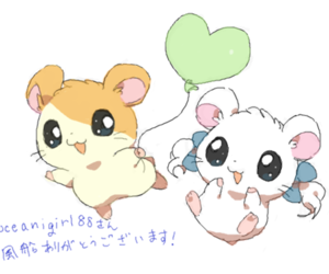 hamtaro, anime, and cute image