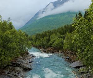 beautiful landscape image