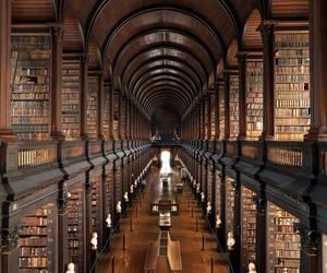books, fantastico, and libreria image