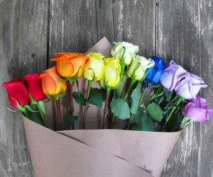 rose, love, and colors image