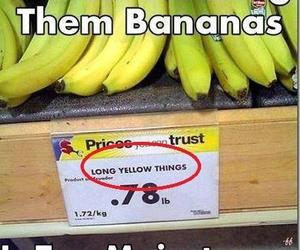 funny, banana, and lol image