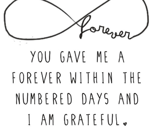 tfios, forever, and quote image