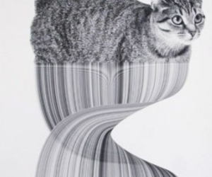 art, grunge, and cats image