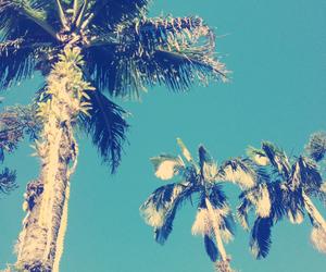 beach, beautifull, and blue image