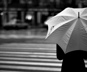 photography and umbrella image