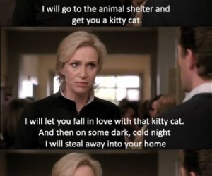 glee, funny, and kitty image
