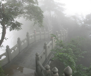 pale, fog, and nature image