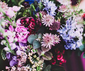 beauty, flowers, and inspiration image