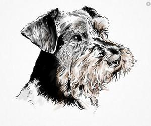 adorable, dog, and sketch image