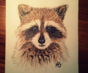 drawing and raccoon image