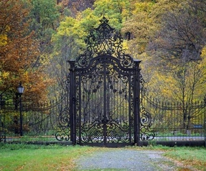 entrance, gate, and forest image