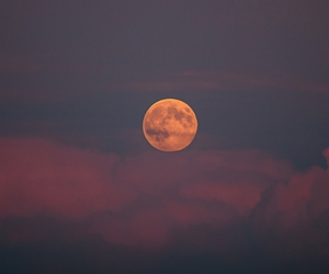 moon, indie, and nature image