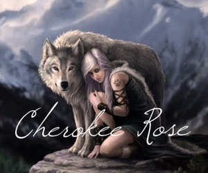majestic, silver hair, and wolves image