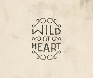 wild, heart, and text image