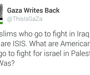americans, muslims, and palestine image