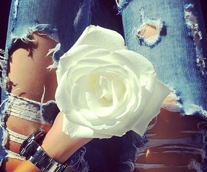 flowers, rose, and jeans image