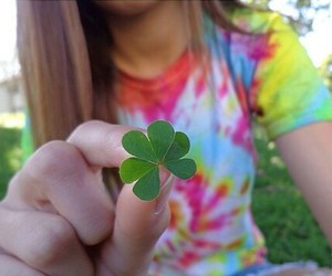 amazing, lucky clover, and gorgeous image