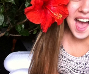 flower, hibiscus, and lol image