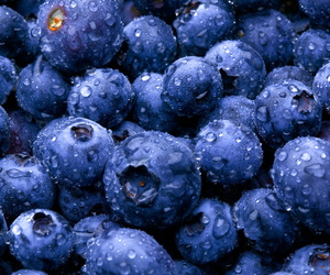 blueberry, fruit, and blue image