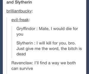 gryffindor, ravenclaw, and slytherin image