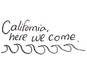 california, draws, and palms image