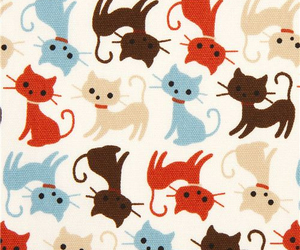 cat, kitty, and wallpaper image