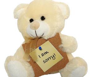 apology, i am sorry, and teddy bear image