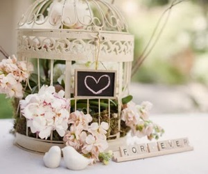 bird cage, flowers, and pastel image