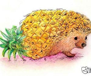 art and hedgehog image