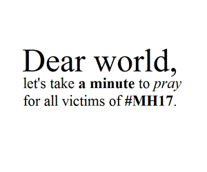mh17, pray, and victims image