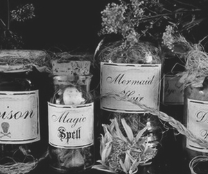 magic, poison, and black and white image