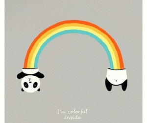 panda, rainbow, and colorful image