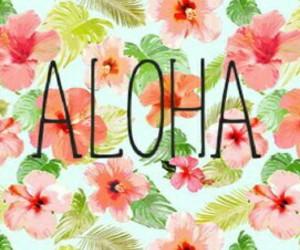 Aloha, smile, and flower image