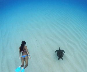 turtle, girl, and beach image