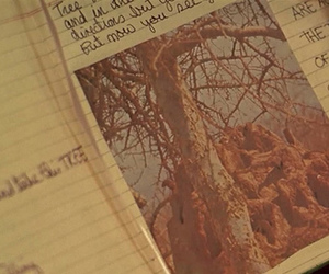 journal, Sofia Coppola, and virgin suicides image