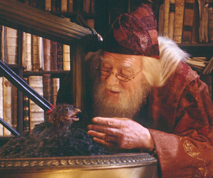 albus dumbledore, fanny, and harry potter image