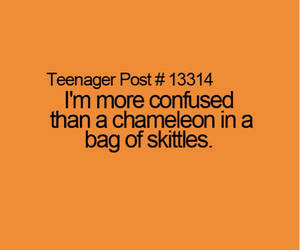 funny and skittles image
