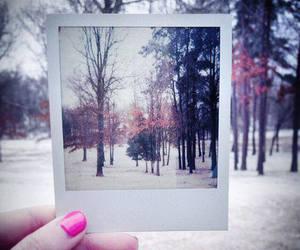 polaroid, winter, and artsy image